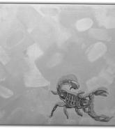 041-skorpion