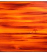 062-abend-in-der-savanne